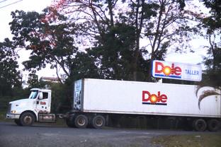 Contenedores de la empresa frutera Dole