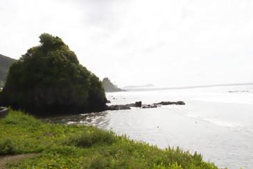Isla maceta