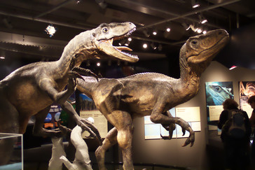 También hay representaciones de dinosaurios
