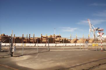 En el puerto se ven grandes troncos dispuestos para embarcar. Es una de las exportaciones de Nueva Zelanda