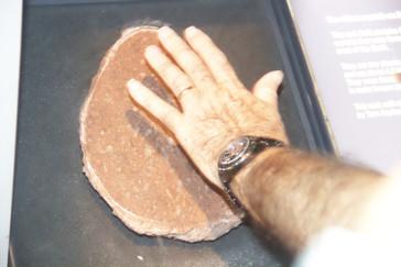 Roca que tiene los cristales más antiguos de la Tierra encontrados hasta ahora.