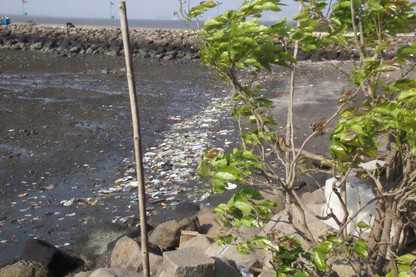 Acercándonos al puerto vemos la playa con marea baja