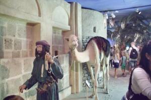 Camello y camellero