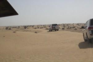 Me da pena que esa arena tan lisa, tan aparentemente impoluta, vaya a ser hollada por las ruedas de tantos coches.