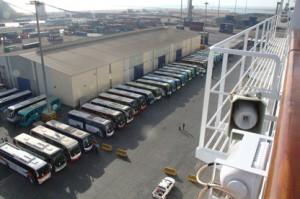 En el puerto están alineados los autobuses que nos llevarán al Cairo