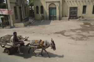 La imagen del burro tirando de un carro es habitual