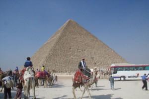 Camellos y autobuses se mezclan