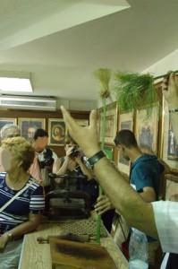 En el show de la tienda nos enseñaron cómo era la planta de papiro, que abunda mucho en las orillas del Nilo