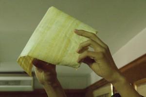 El papiro resultante
