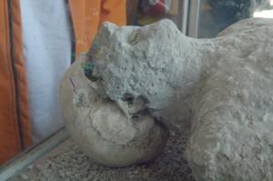 Cabeza. Observen el cráneo de hueso saliendo de entre las cenizas volcánicas