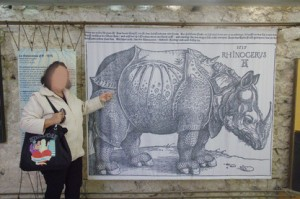 Rinoceronte de la India de Durero