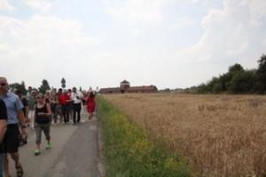 Al fondo, Birkenau (Auschwitz II)