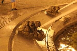 Los leones lanzan agua