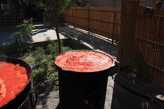 ¿salsa de tomate?
