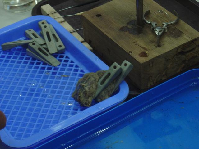 En la esquina inferior derecha del recipiente hay dos ostras con cuñas para abrirlas e introducir la semilla