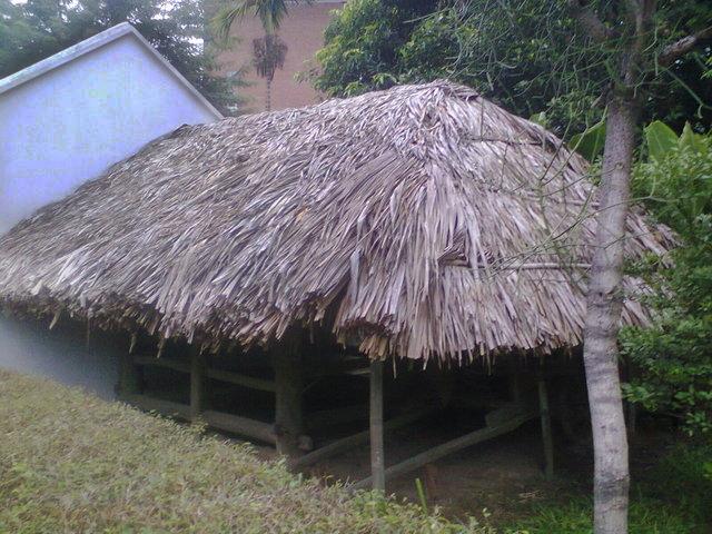 Cabaña donde se ve el tejado típico