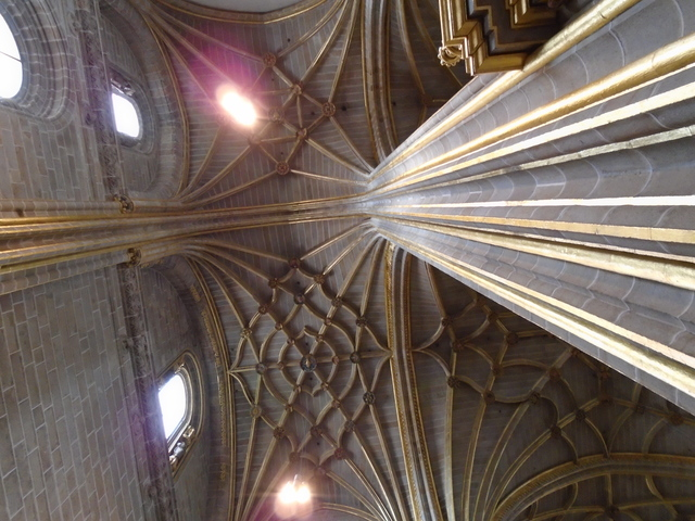 Techos Catedral Nueva de Plasencia.