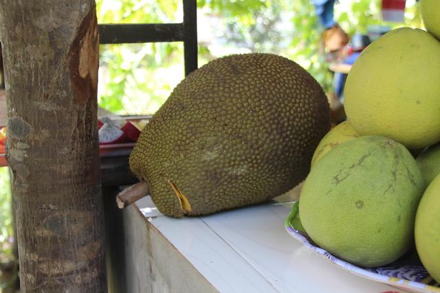 Si no me confundo a la izquierda hay un fruto del árbol del pan y el resto son pomelos.